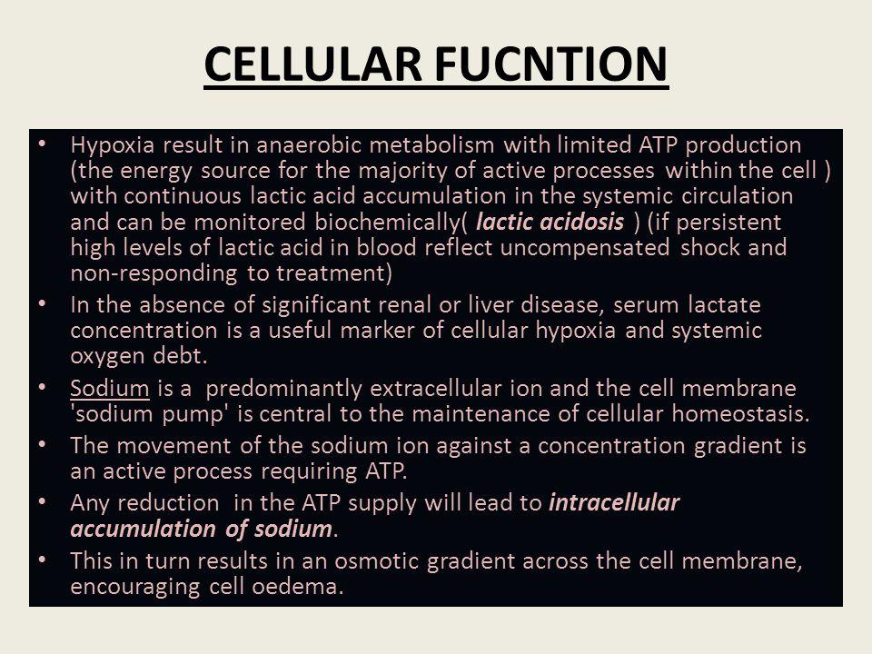 CELLULAR FUCNTION