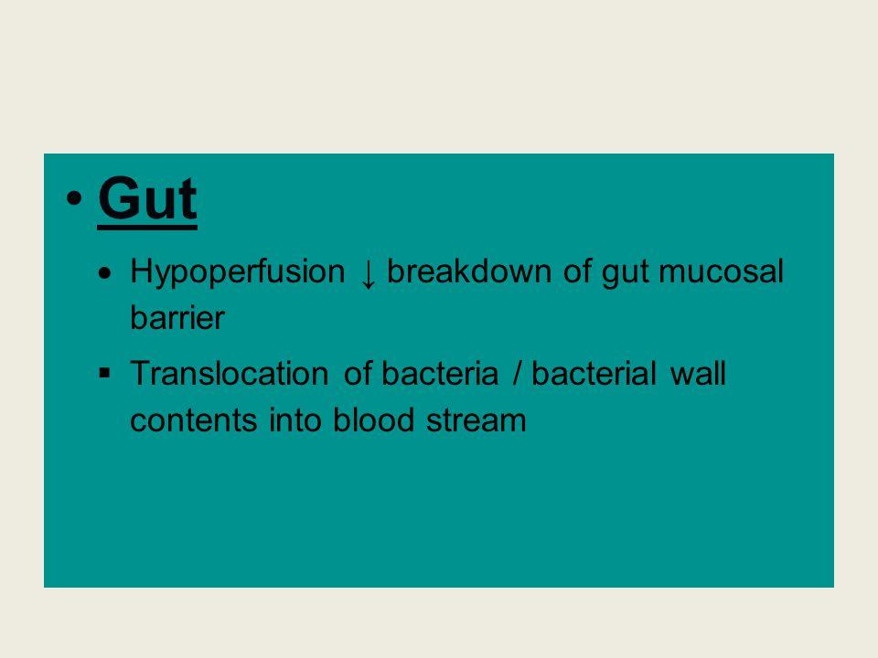 Gut Hypoperfusion ↓ breakdown of gut mucosal barrier