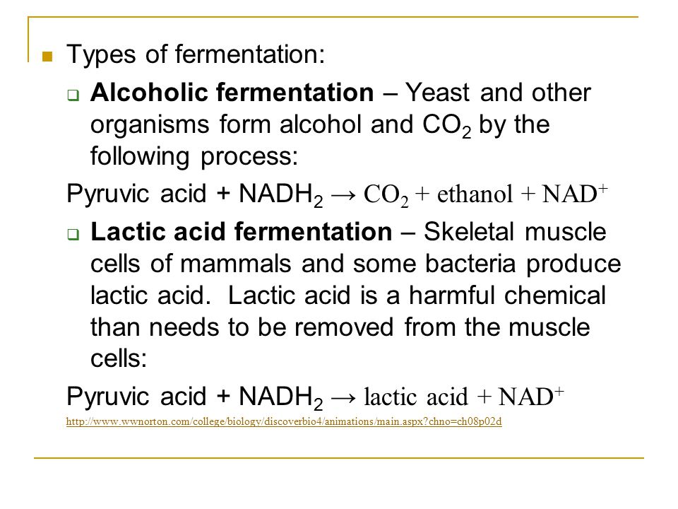 Types of fermentation: