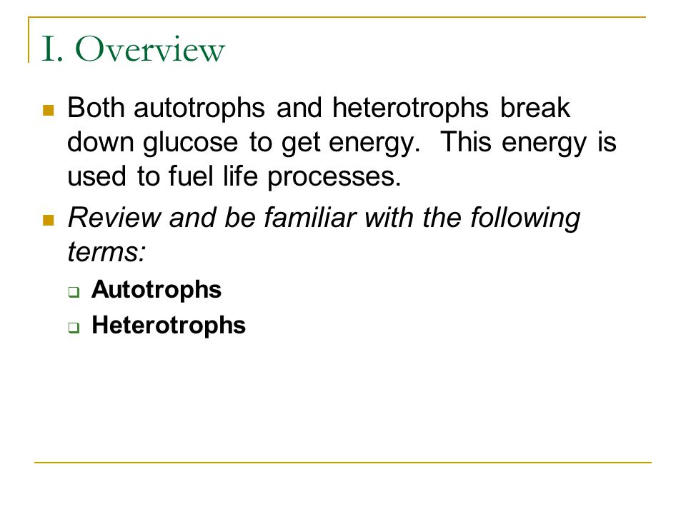 I. Overview Both autotrophs and heterotrophs break down glucose to get energy. This energy is used to fuel life processes.