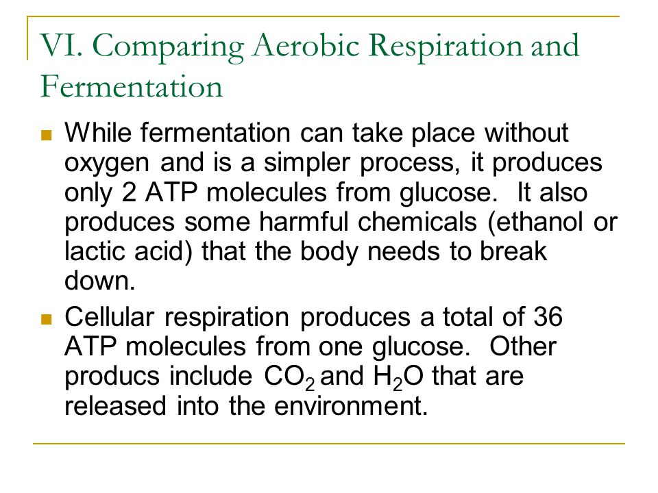 VI. Comparing Aerobic Respiration and Fermentation