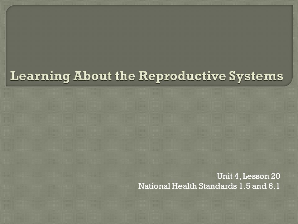 Learning About the Reproductive Systems