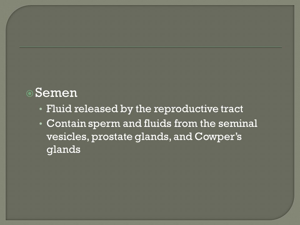 Semen Fluid released by the reproductive tract