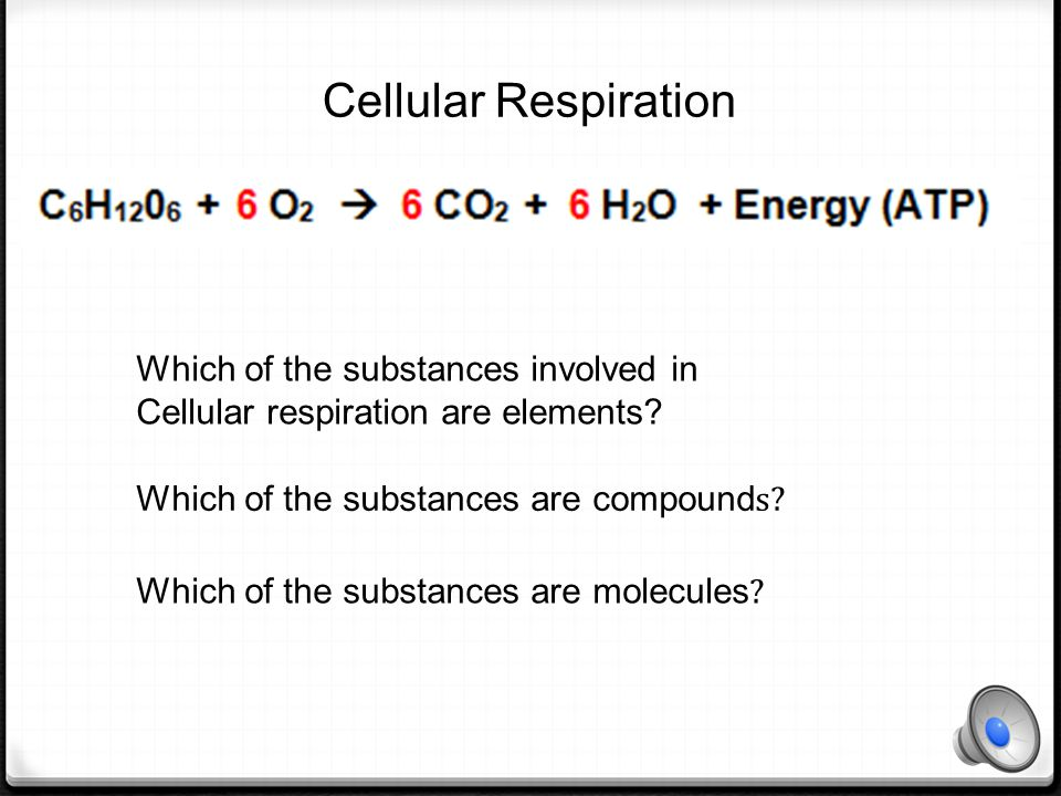 Cellular Respiration Which of the substances involved in