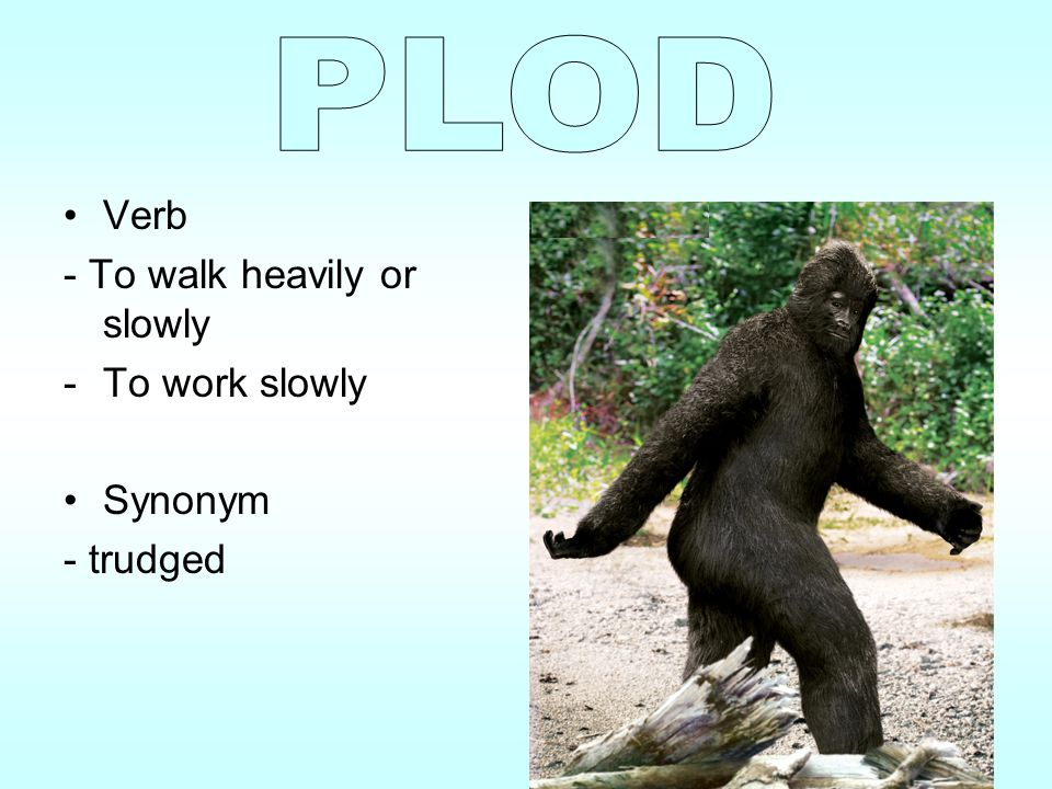 PLOD Verb - To walk heavily or slowly To work slowly Synonym - trudged