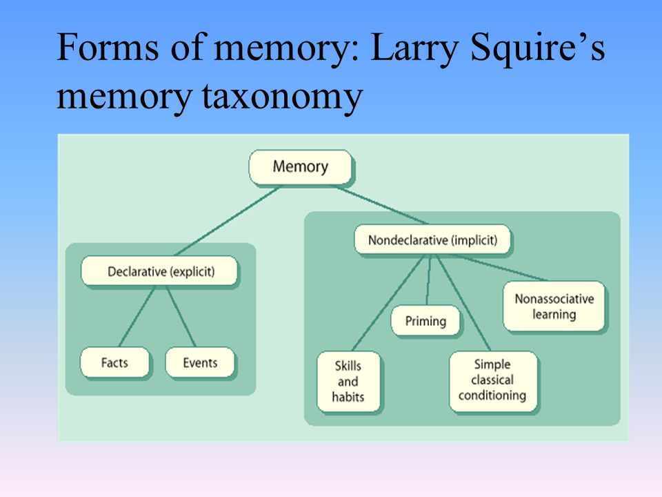 Forms of memory: Larry Squire's memory taxonomy
