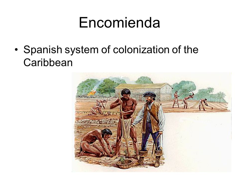 Encomienda Spanish system of colonization of the Caribbean