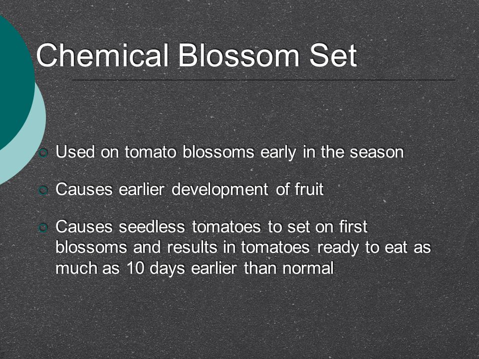 Chemical Blossom Set Used on tomato blossoms early in the season