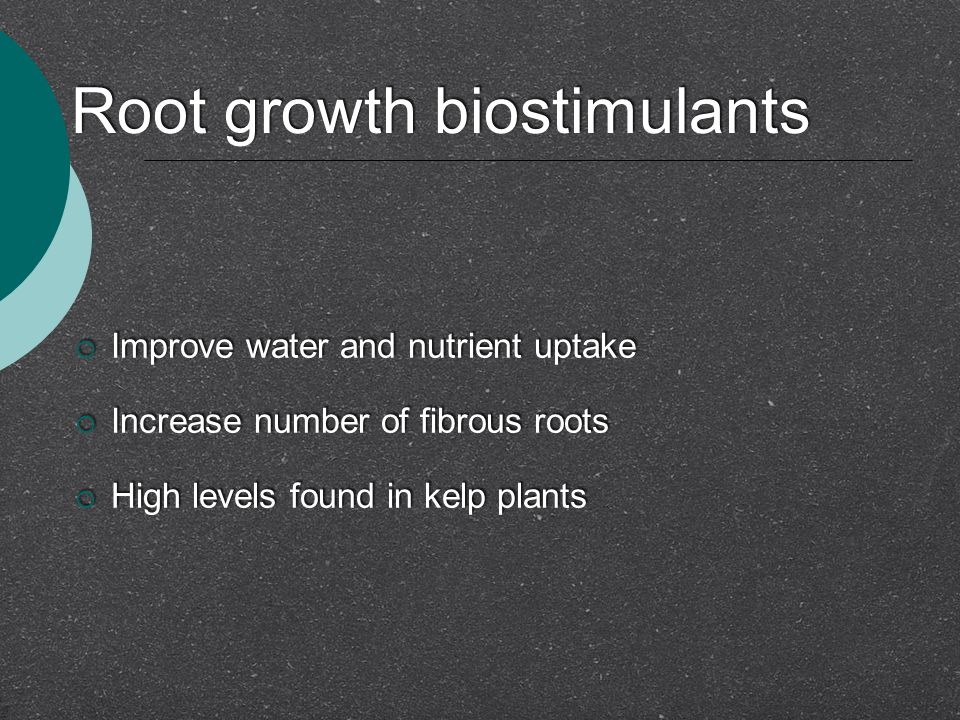Root growth biostimulants