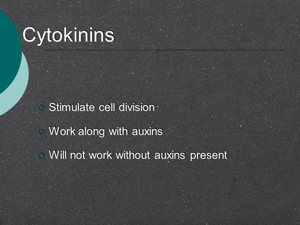 Cytokinins Stimulate cell division Work along with auxins