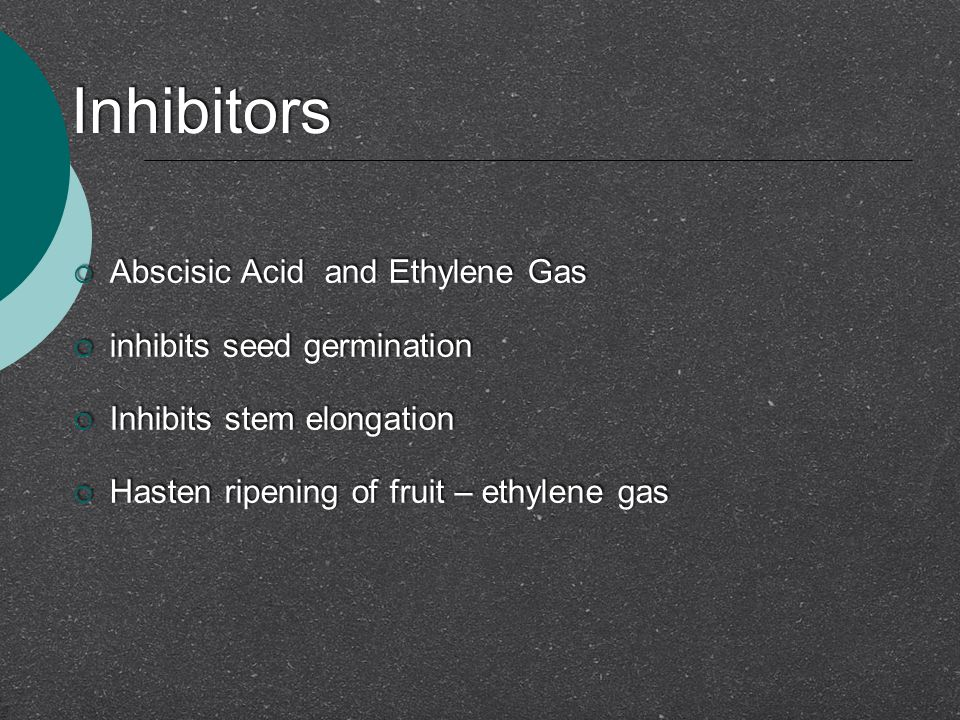 Inhibitors Abscisic Acid and Ethylene Gas inhibits seed germination