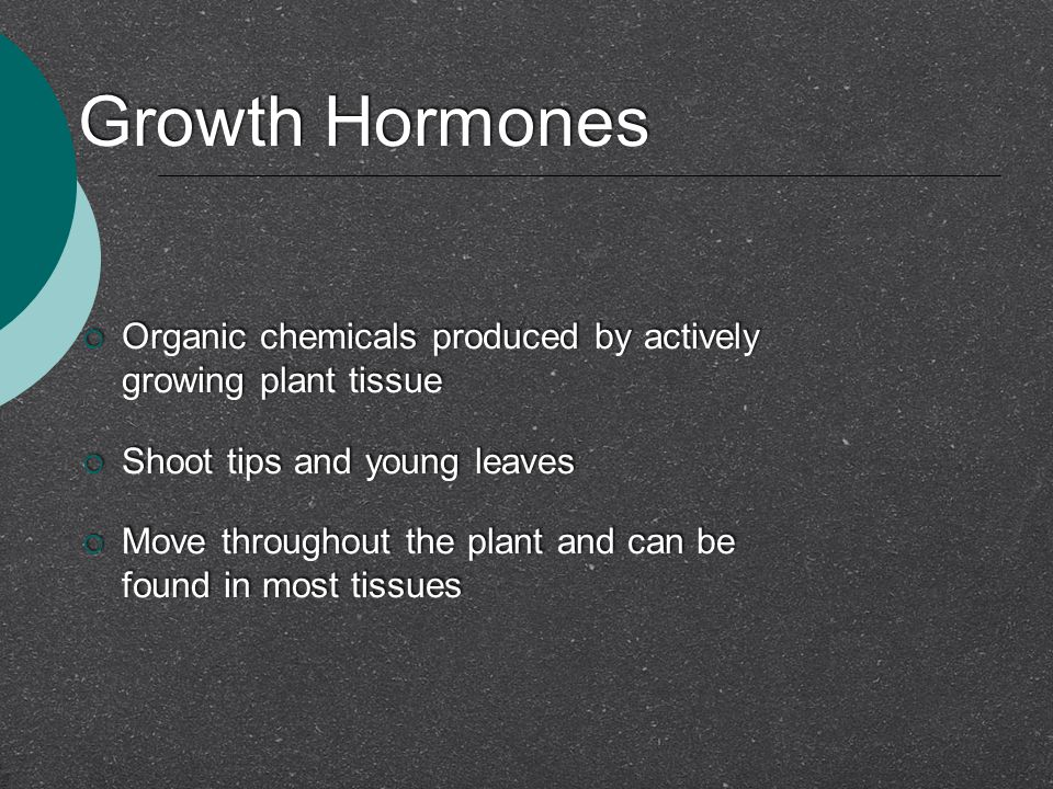 Growth Hormones Organic chemicals produced by actively growing plant tissue. Shoot tips and young leaves.