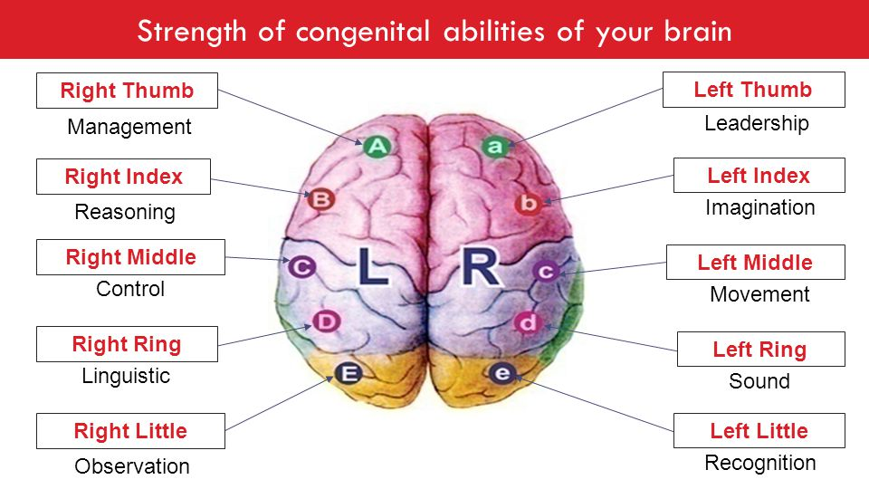 Strength of congenital abilities of your brain