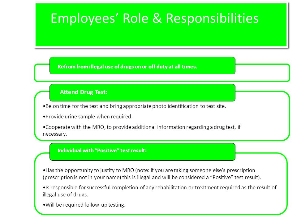 Employees' Role & Responsibilities