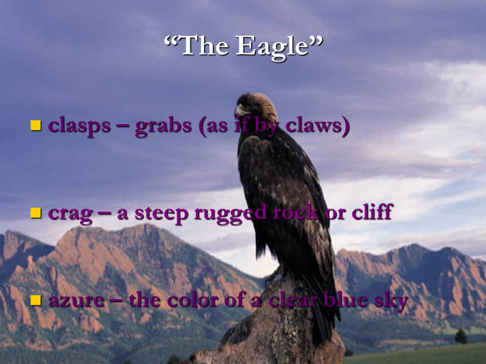 The Eagle clasps – grabs (as if by claws)