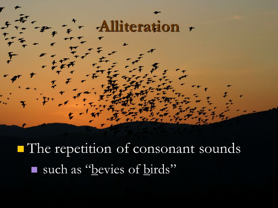 Alliteration The repetition of consonant sounds
