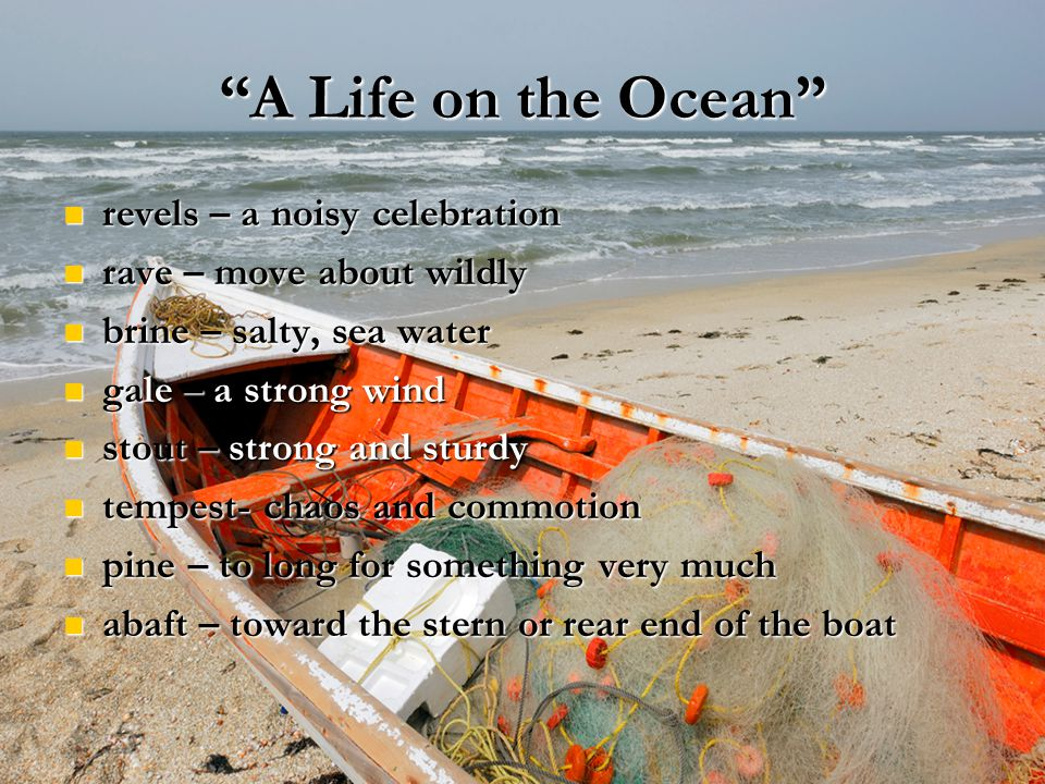 A Life on the Ocean revels – a noisy celebration