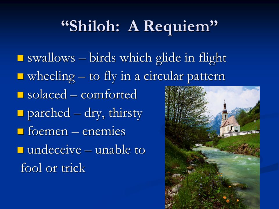 Shiloh: A Requiem swallows – birds which glide in flight