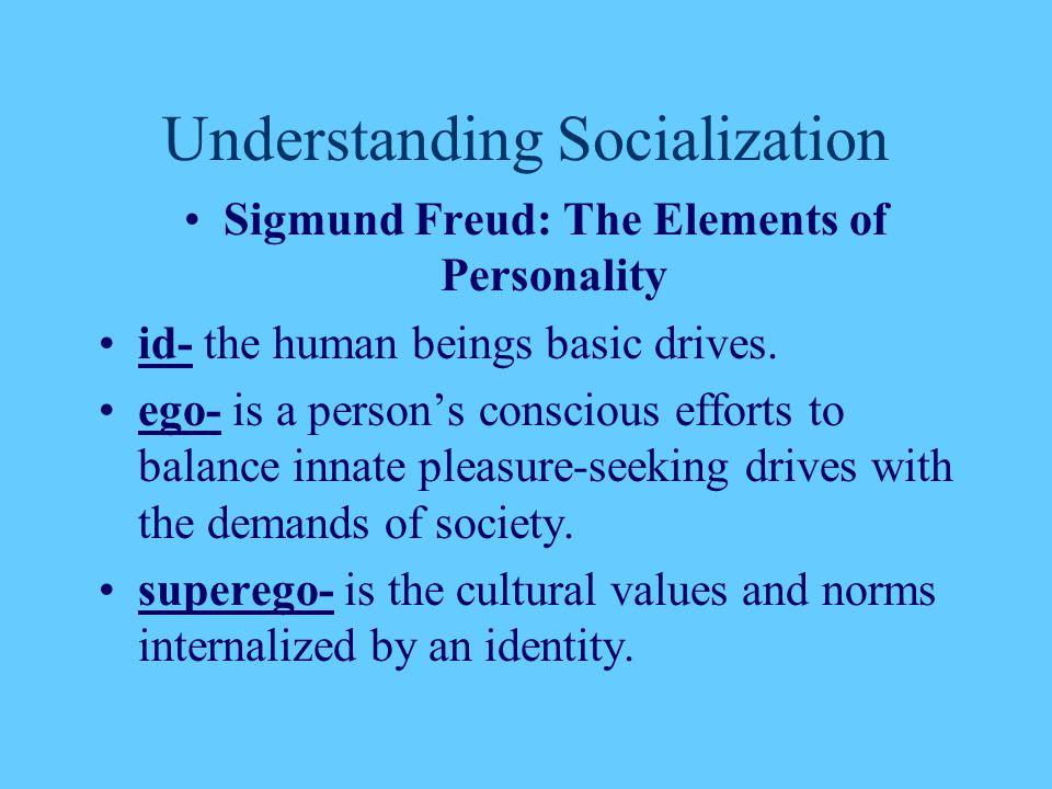 Understanding Socialization