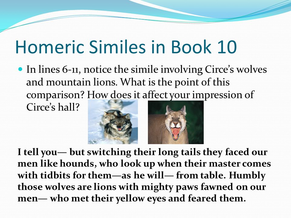 Homeric Similes in Book 10