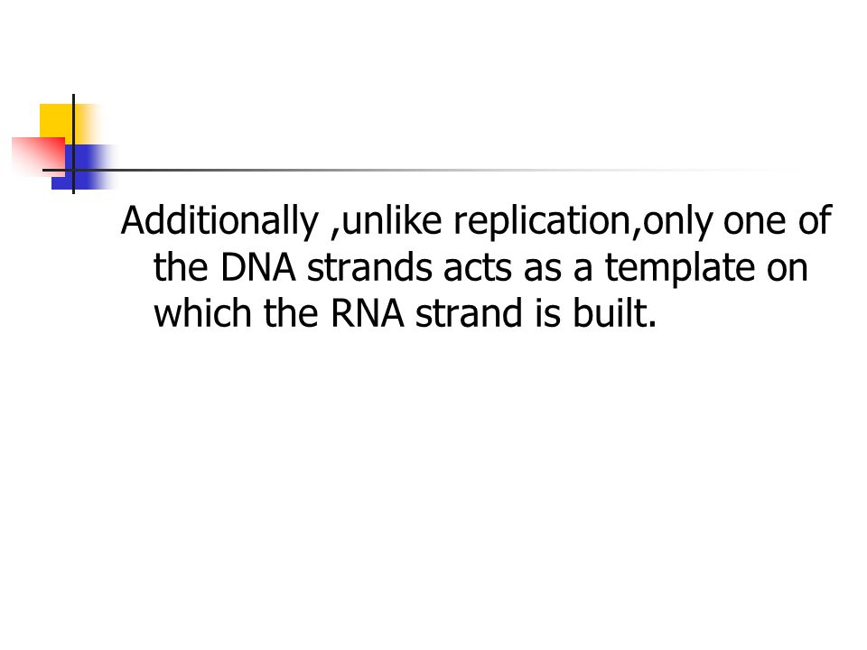 Additionally ,unlike replication,only one of the DNA strands acts as a template on which the RNA strand is built.