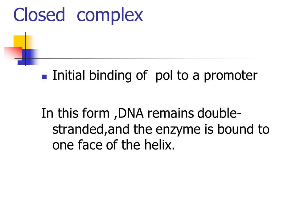 Closed complex Initial binding of pol to a promoter