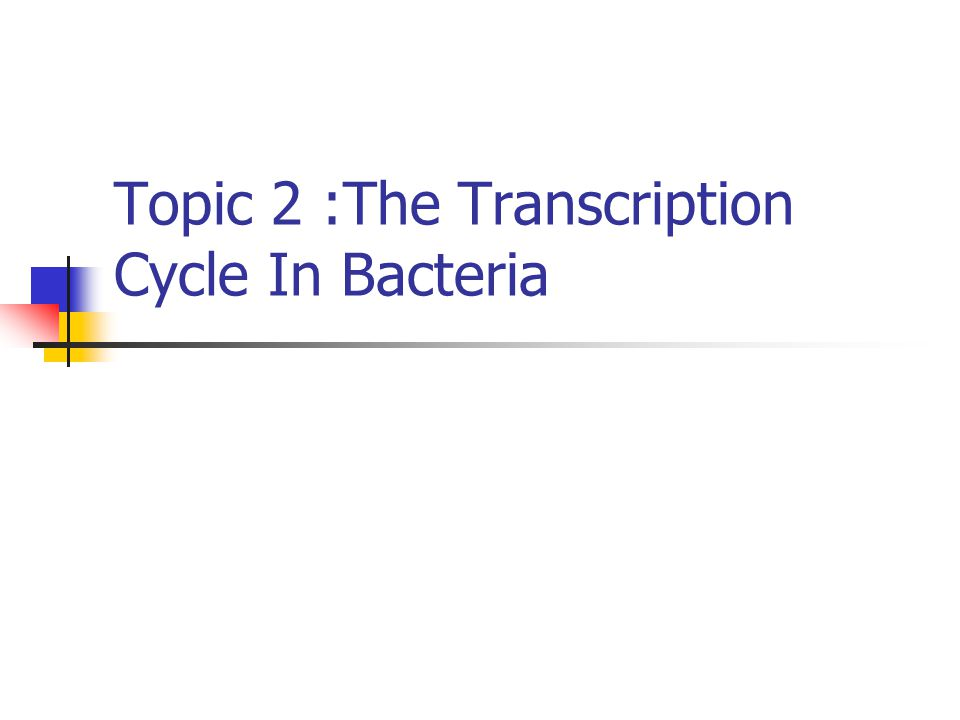 Topic 2 :The Transcription Cycle In Bacteria