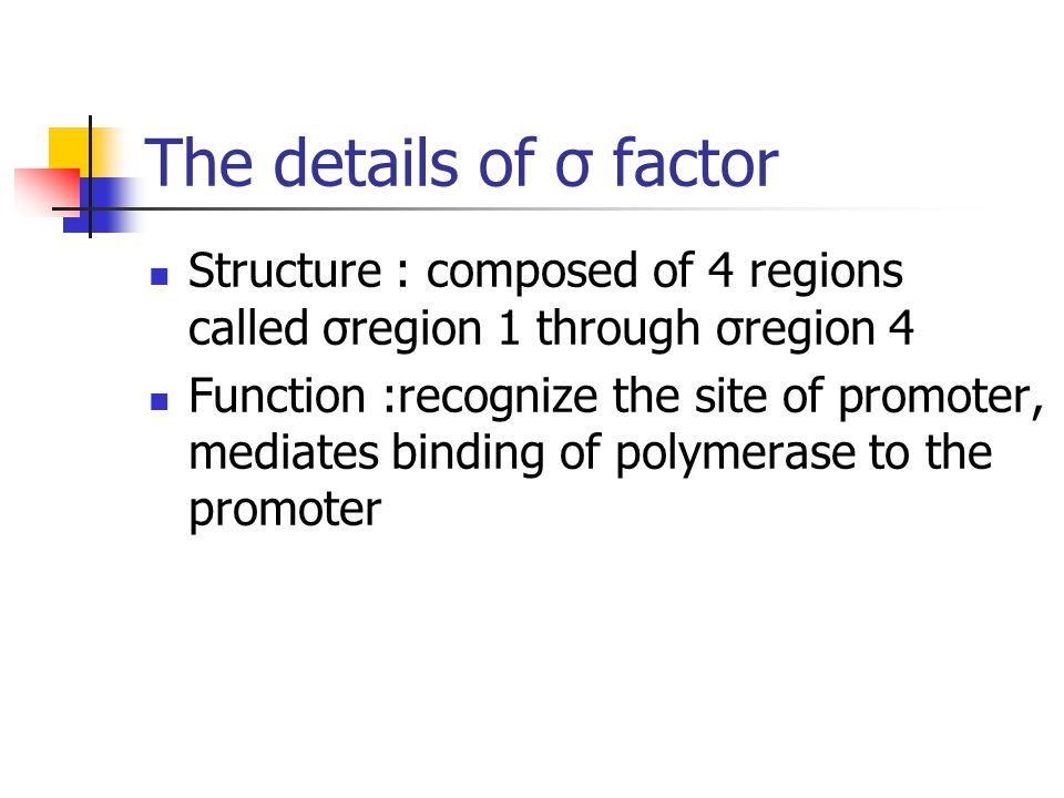The details of σ factor Structure : composed of 4 regions called σregion 1 through σregion 4.