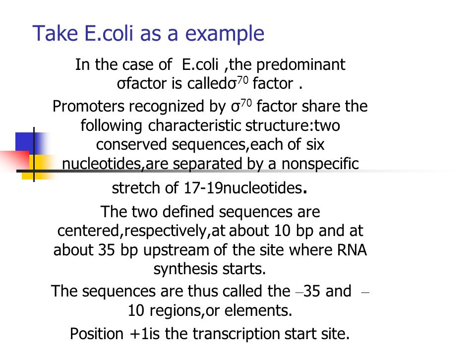 Take E.coli as a example In the case of E.coli ,the predominant σfactor is calledσ70 factor .