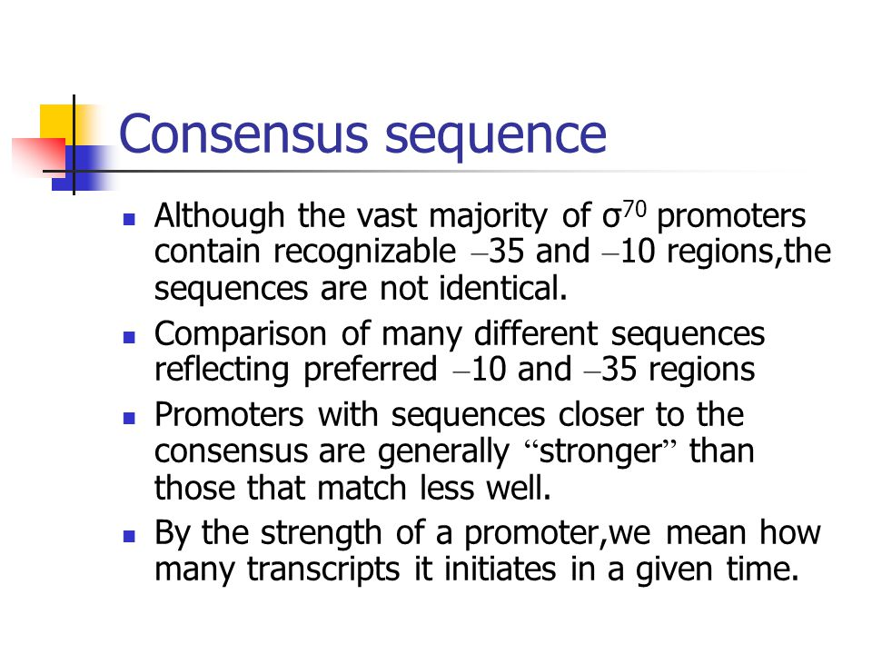 Consensus sequence Although the vast majority of σ70 promoters contain recognizable –35 and –10 regions,the sequences are not identical.