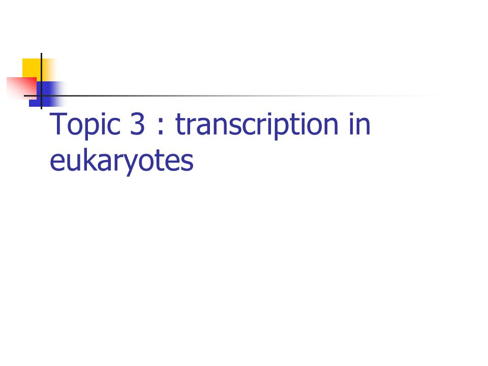 Topic 3 : transcription in eukaryotes