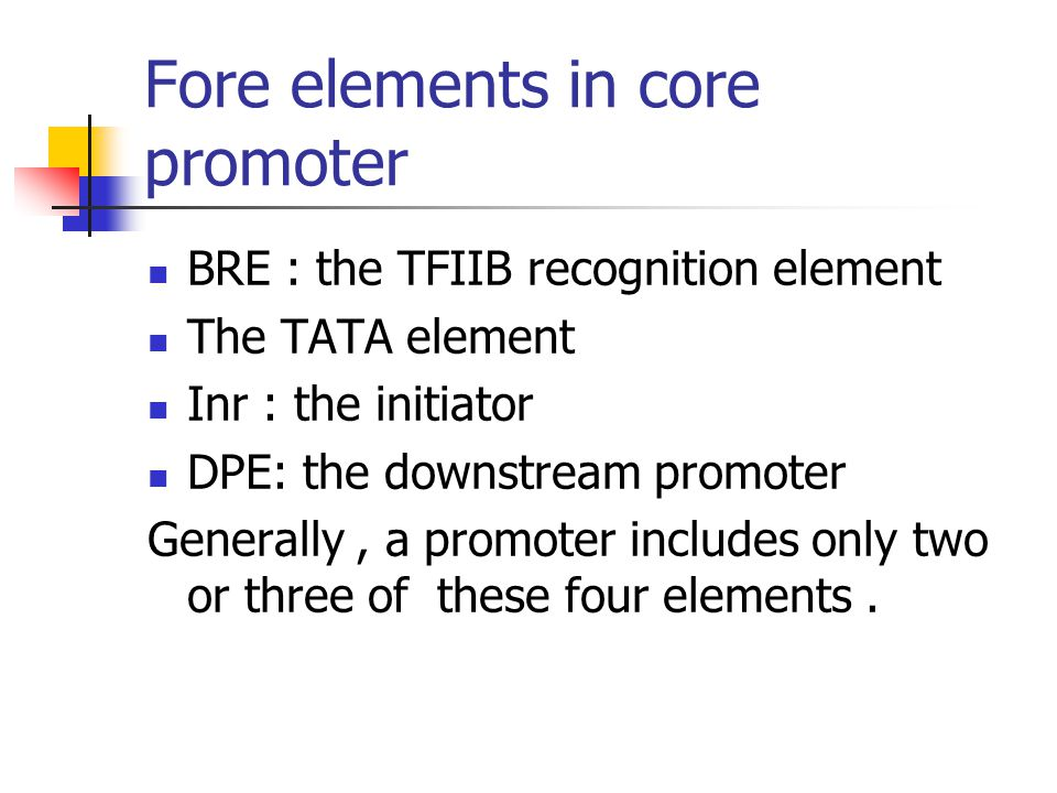 Fore elements in core promoter