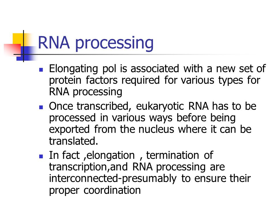 RNA processing Elongating pol is associated with a new set of protein factors required for various types for RNA processing.