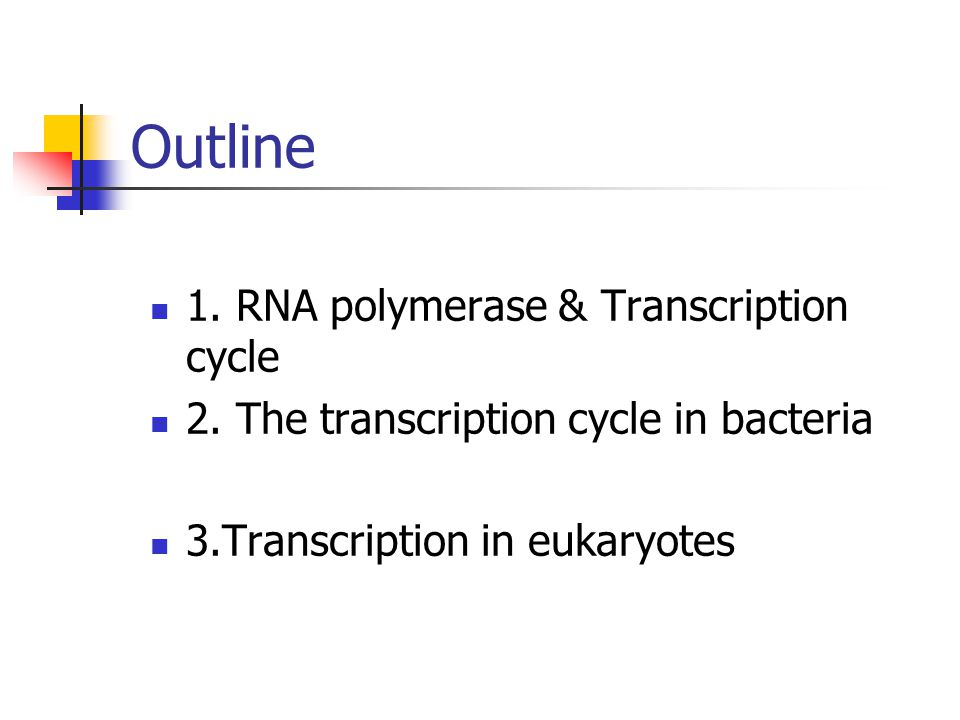 Outline 1. RNA polymerase & Transcription cycle