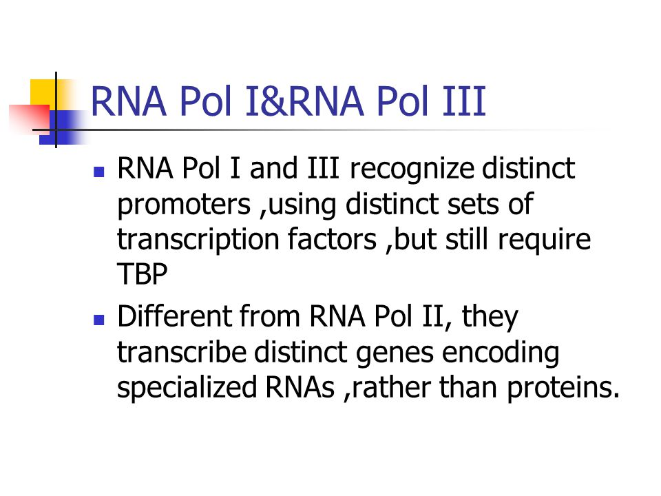 RNA Pol I&RNA Pol III RNA Pol I and III recognize distinct promoters ,using distinct sets of transcription factors ,but still require TBP.