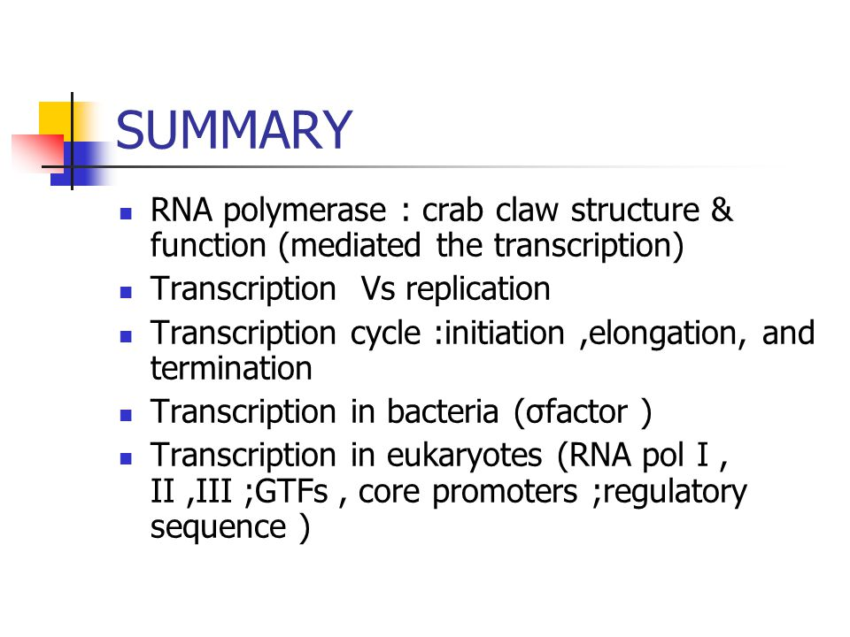 SUMMARY RNA polymerase : crab claw structure & function (mediated the transcription) Transcription Vs replication.