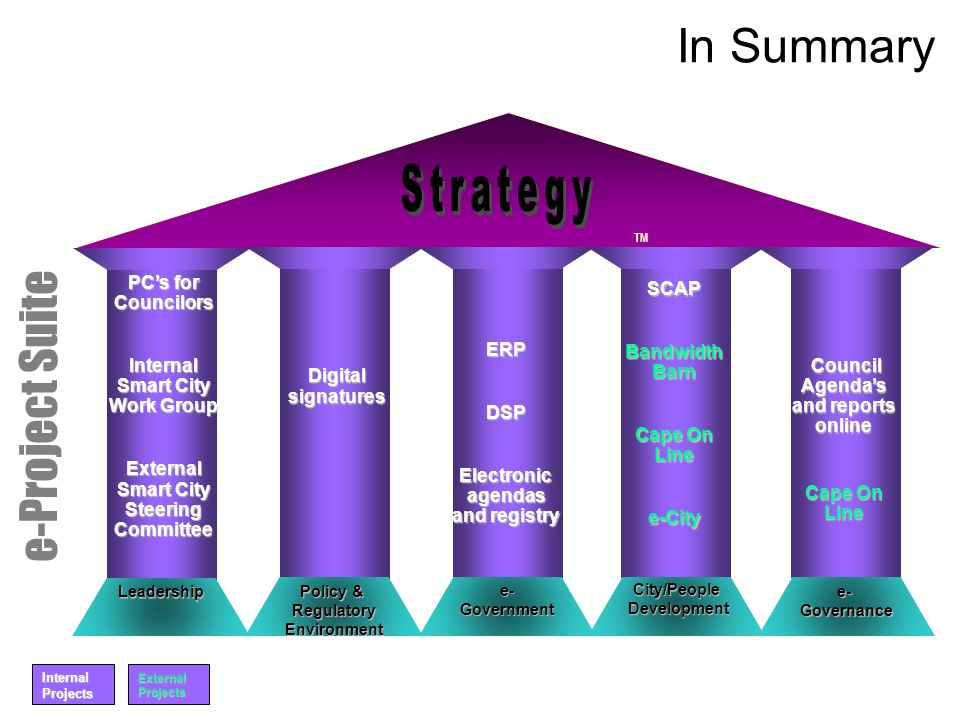 Strategy In Summary e-Project Suite PC's for Councilors SCAP