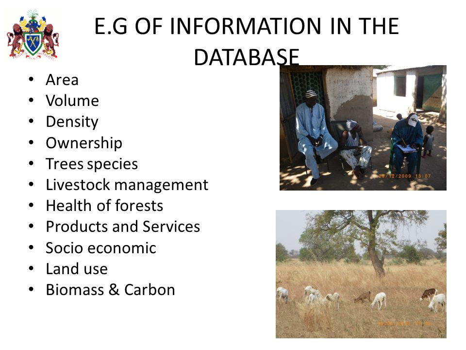 E.G OF INFORMATION IN THE DATABASE