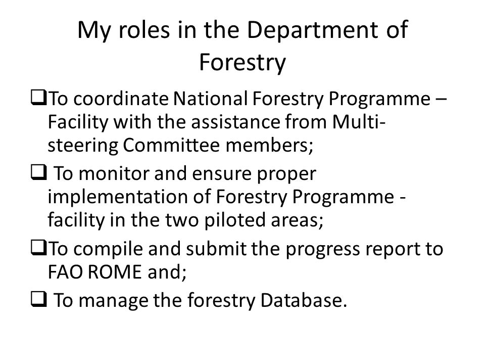 My roles in the Department of Forestry