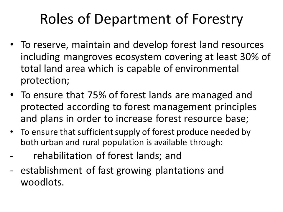 Roles of Department of Forestry