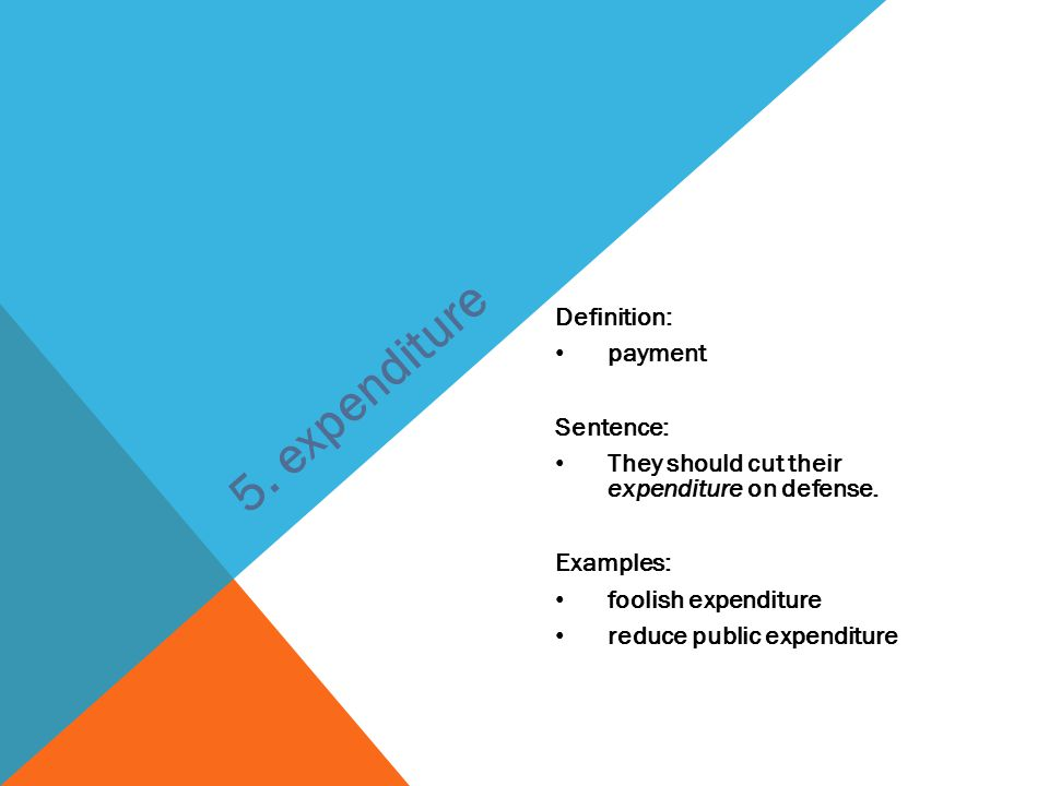 5. expenditure Definition: payment Sentence:
