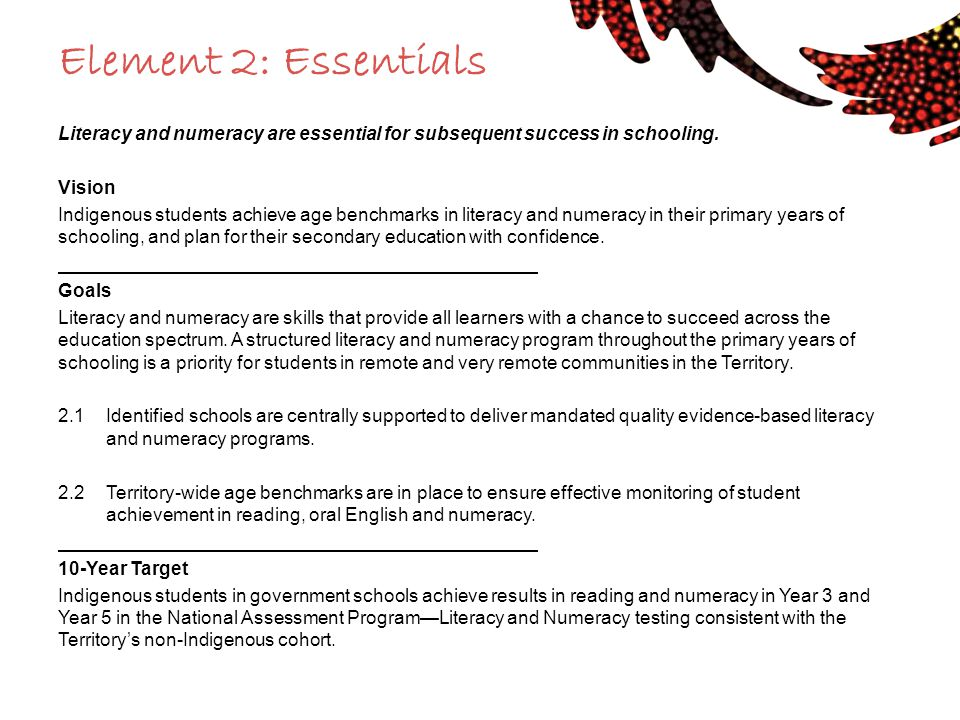 Element 2: Essentials Literacy and numeracy are essential for subsequent success in schooling. Vision.