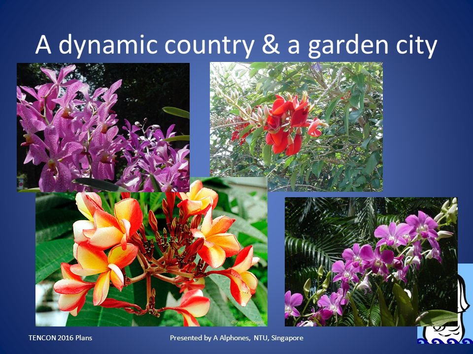 A dynamic country & a garden city