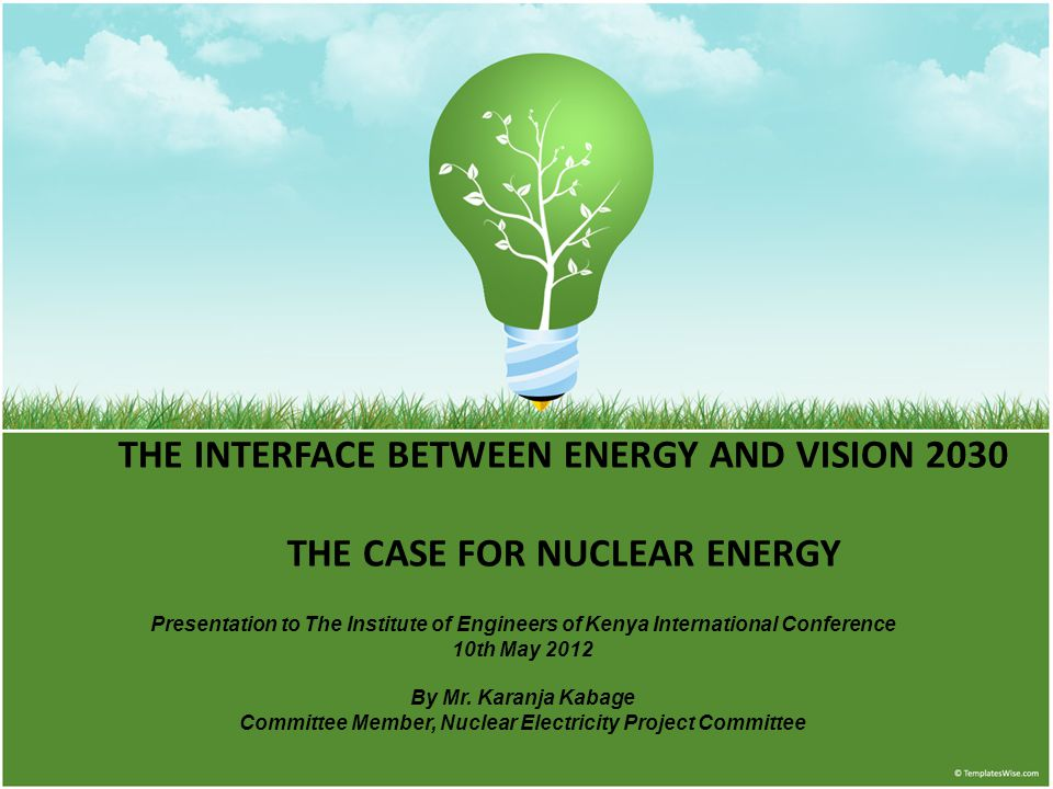 Committee Member, Nuclear Electricity Project Committee
