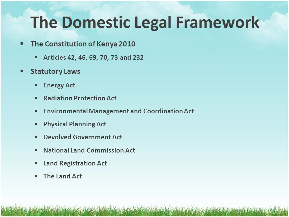 The Domestic Legal Framework