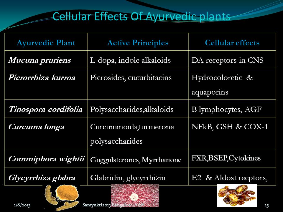 Cellular Effects Of Ayurvedic plants