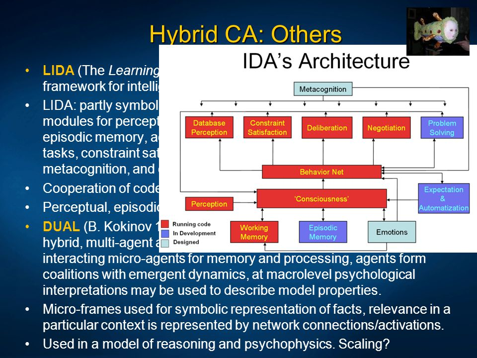 Hybrid CA: Others