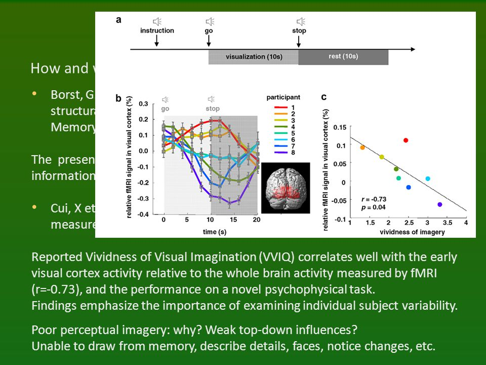 Imagery and brains How and where are mental images formed