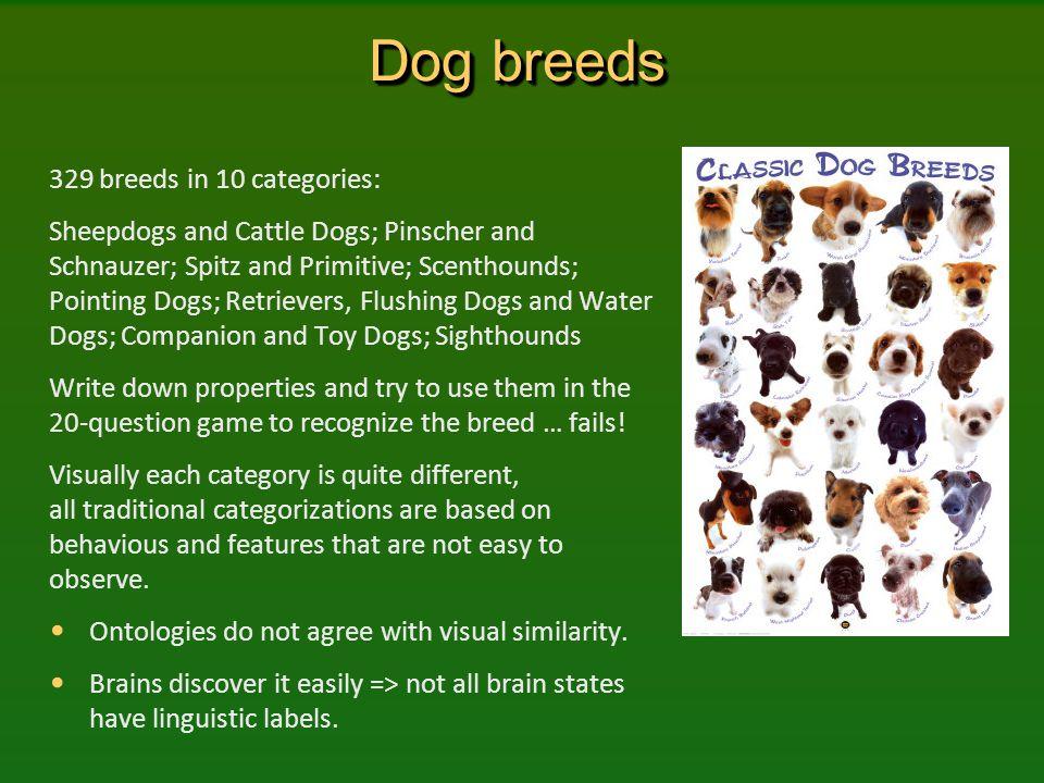 Dog breeds 329 breeds in 10 categories: