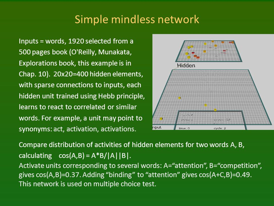 Simple mindless network